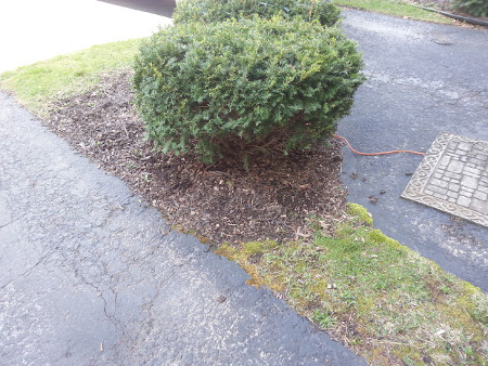 Wagner Home Services Landscaping Job